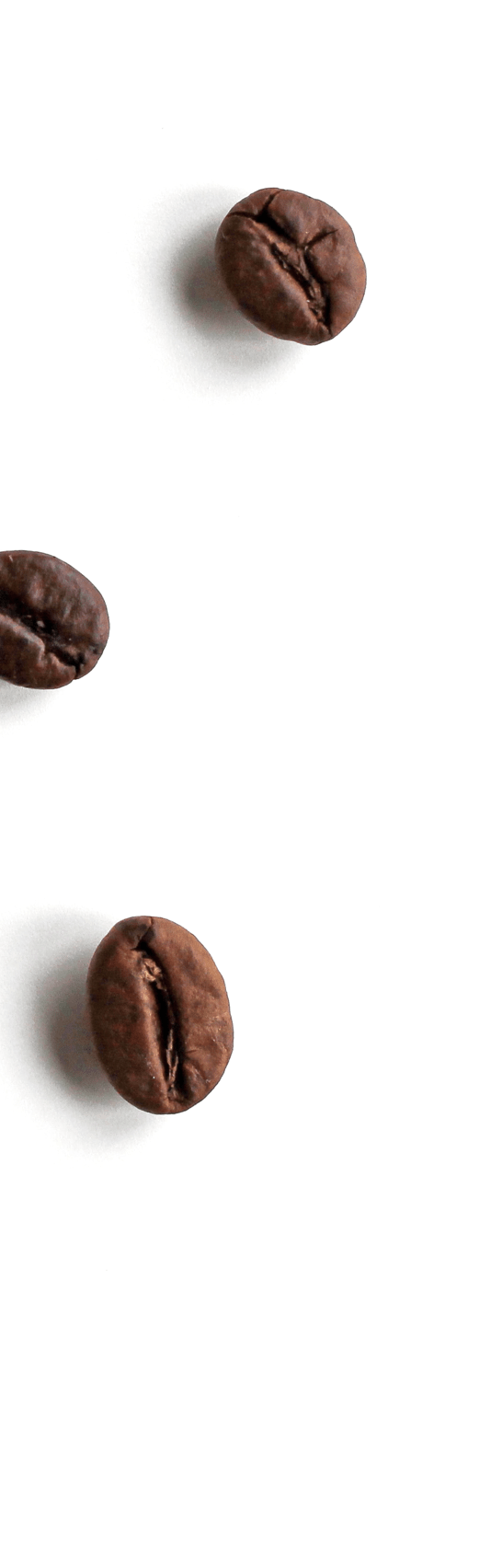 coffee bean parallax image