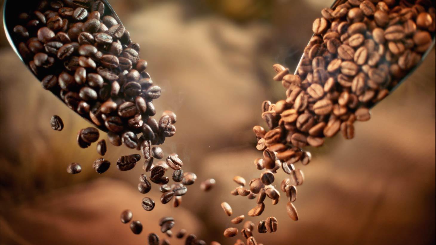 Granos de café oscuro y granos de café ligero cayendo para ser tostados