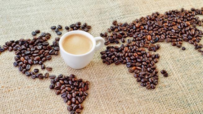 Conocimiento del café