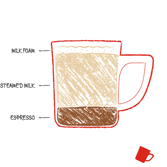Drawing of latte coffee ingredients in a cup