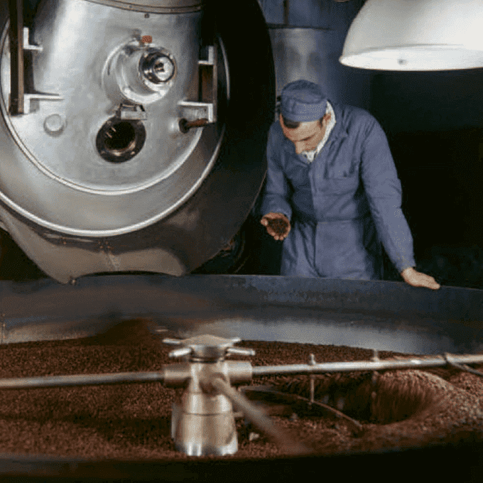 Man inspecting roasted coffee beans in Orbe factory in 1959