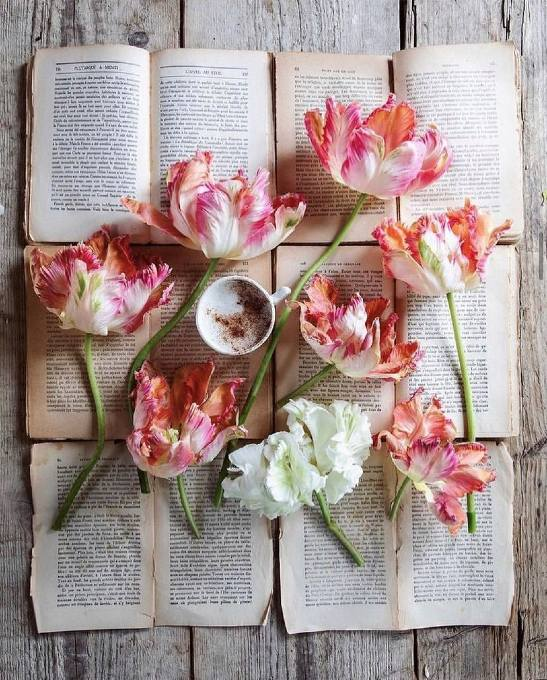 Flowers and a coffee on book pages