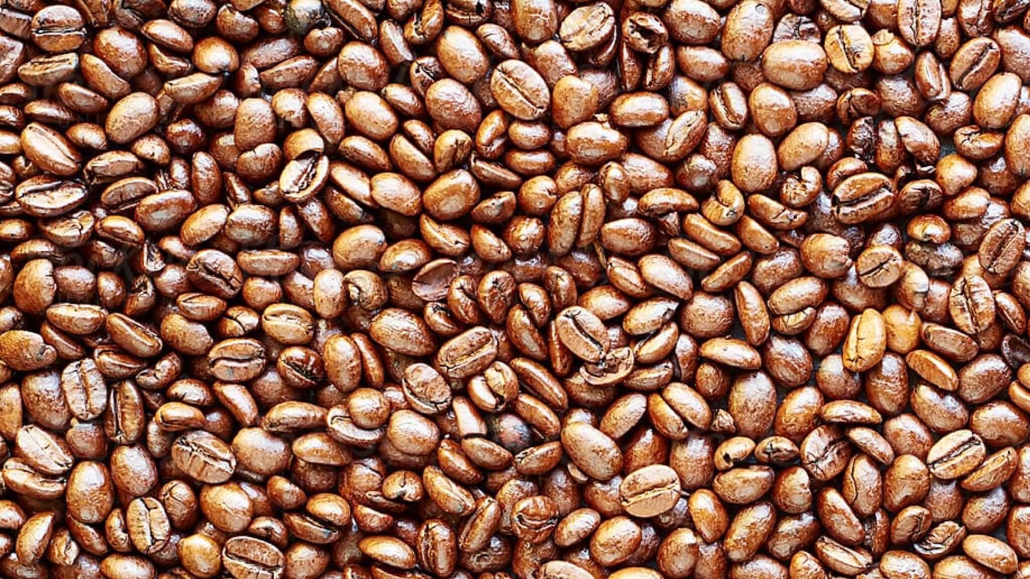 연한 커피