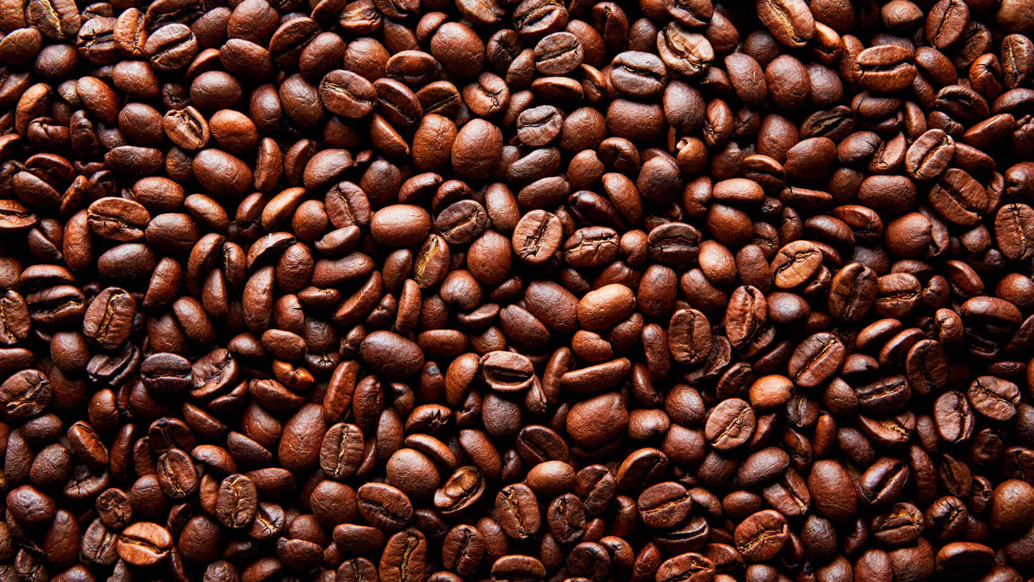 중간정도 커피