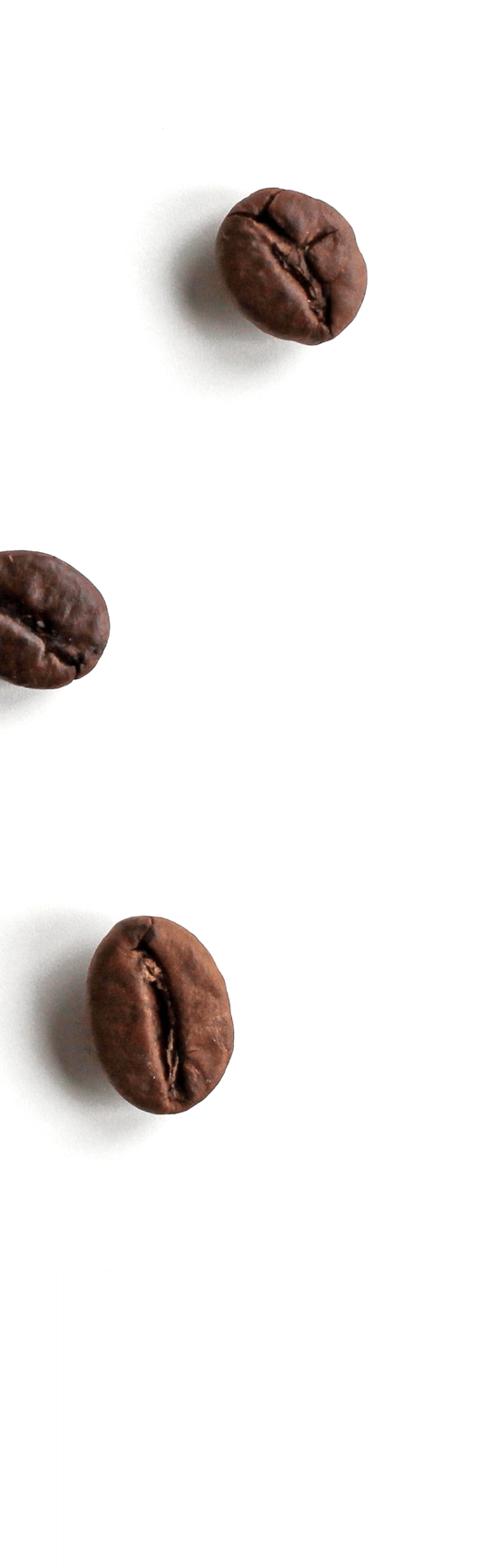 Coffee Beans from NESCAFE